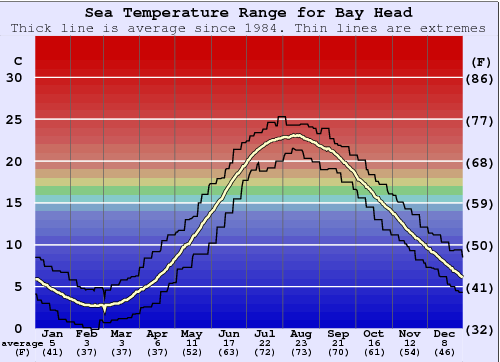 Bay Head Temperatura del mare Grafico