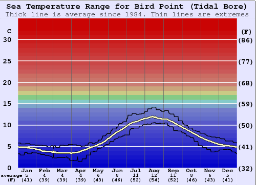 Bird Point (Tidal Bore) Temperatura del mare Grafico